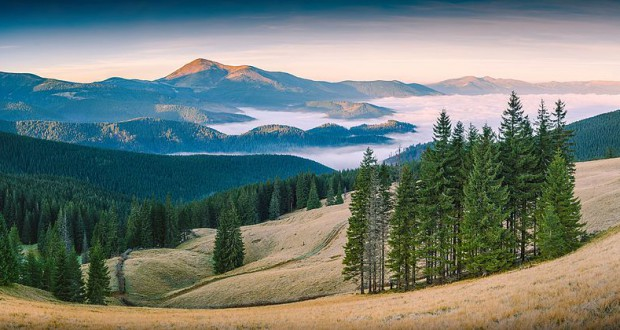 Photo of Ukrainian Carpathian Biosphere Reserve – among Wiki Loves Earth 2015 winners