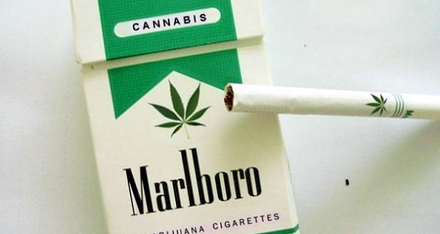 Philip Morris to sell marijuana cigarettes in Colorado