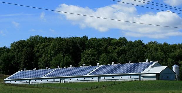 Era of free clean energy is near - expert