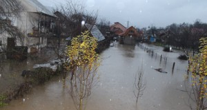 Heavy rains and floods in Transcarpathian regions caused damage to roads and households