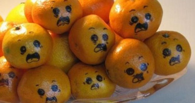 Russia smashed and buried smuggled Turkish tangerins