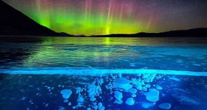 Amazing frozen bubbles lit up by the Northern Lights