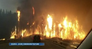 Canada's Alberta declared state of emergency over wildfire