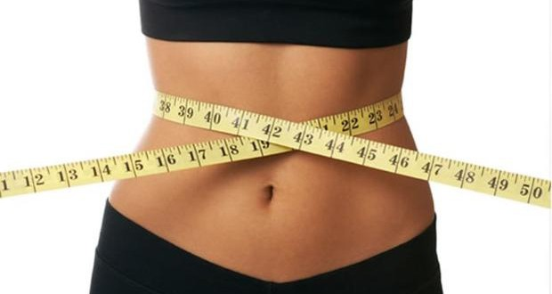Belgian scientists discover an intestinal bacterium that protects against obesity and diabetes