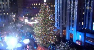 Christmas tree lights up for the 2016 season in New York