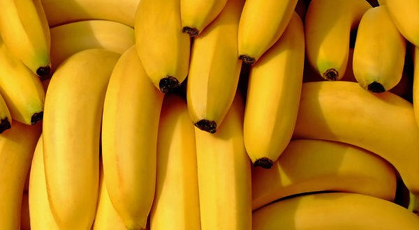 4,000 kilograms of cocaine discovered in banana boxes in the Netherlands