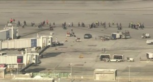 Fort Lauderdale airport shooting: Five people dead, suspect in custody