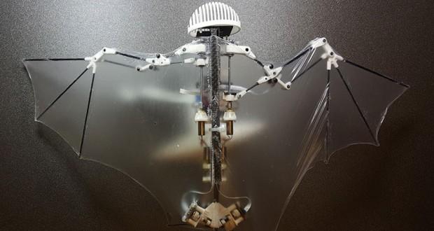 Meet Bat Bot: The First Flying Robot