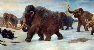 Biologists Plan to Bring the Woolly Mammoth Back to Life by 2019