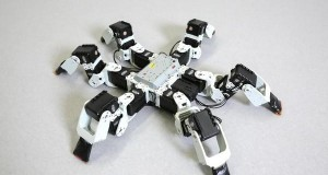 Researchers find most efficient way to walk for this six-legged robot