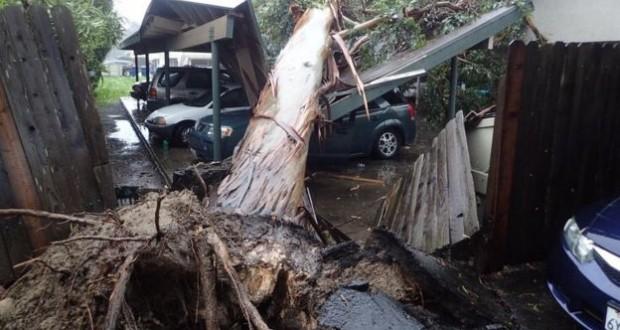 California 'bombogenesis', biggest storm in years, kills two