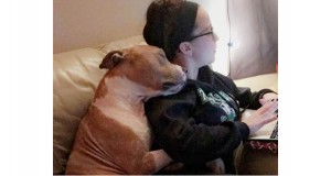 True Love: Dog Snuggles New Mom Who Rescued Him Rrom Shelter