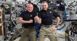 Spaceflights physically change astronauts' brains