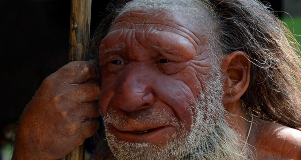 Neanderthals discovered 'aspirin' 50,000 years before we did