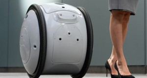 Gita the robot may help you schlep the groceries