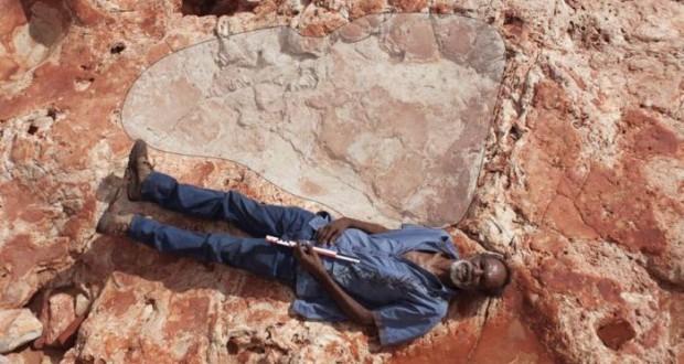 World's biggest dinosaur footprints found in north-western Australia