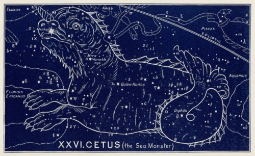 The constellation of Cetus (the Sea Monster), 1895.